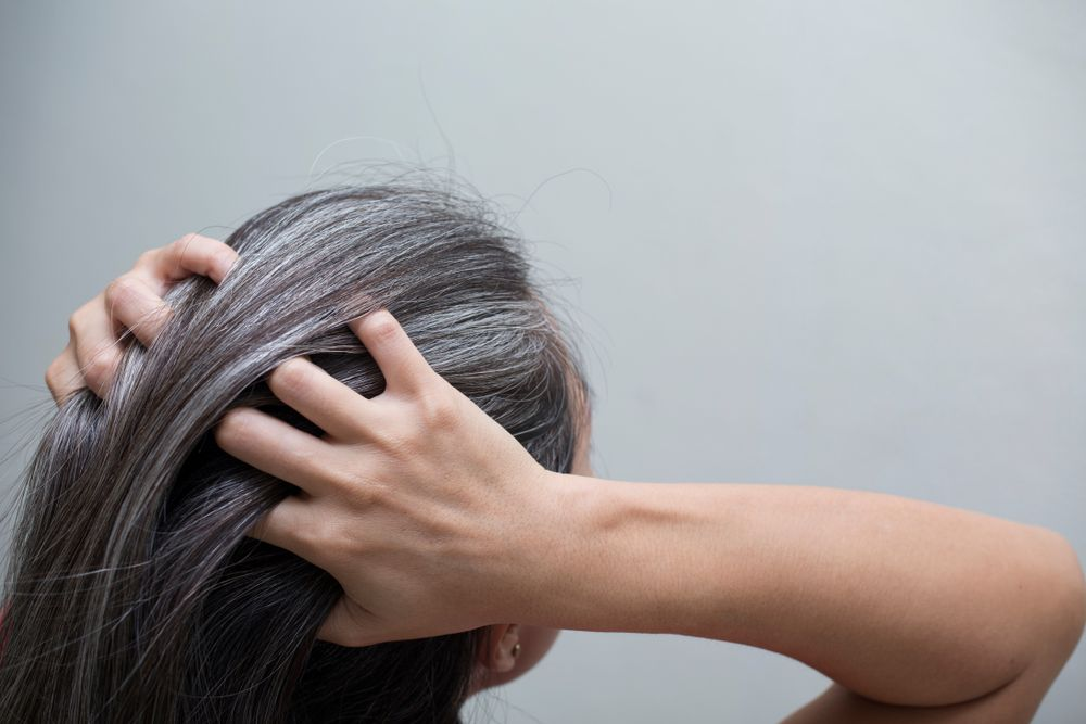 chevelure grise